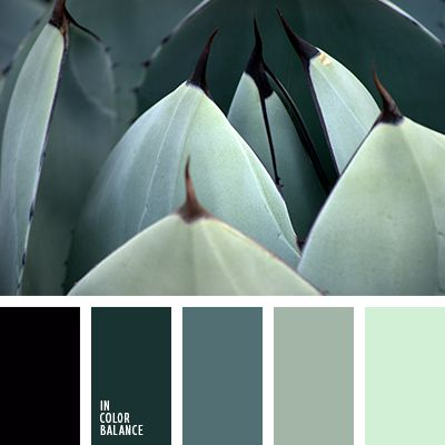 монохромная зеленая цветовая палитра, монохромная цветовая палитра, оттенки зеленого, подбор цвета, сочетание цветов для декора интерьера, цвет базилика, цвет зеленого чая, цвет зеленого яблока, цветовое решение для дизайна помещений, яркий зеленый.