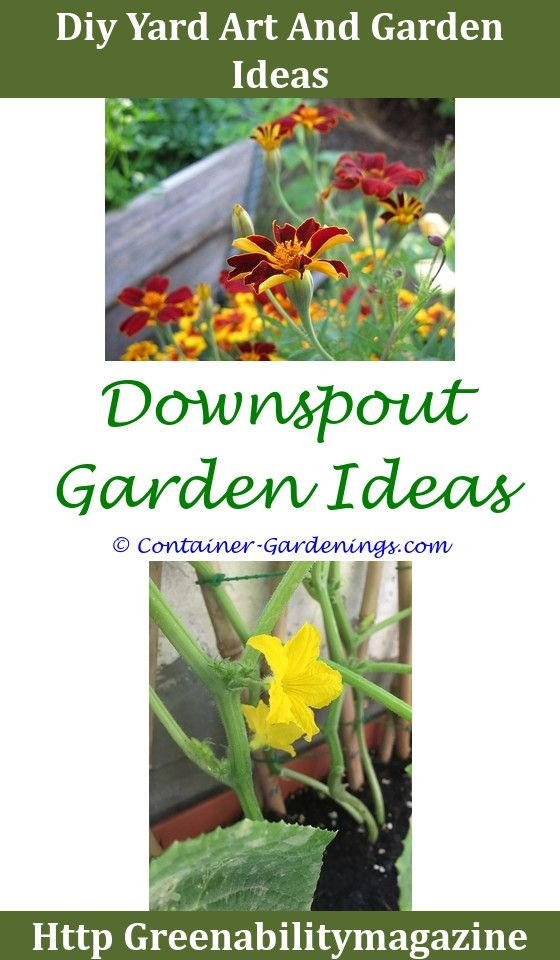 Superior Gargen Burpee Gardening Tips Gardening Tips For Spring Bulbs Stone Garden  Walls Ideas Miniature Moss Garden Ideas,garden Nook Ideas.
