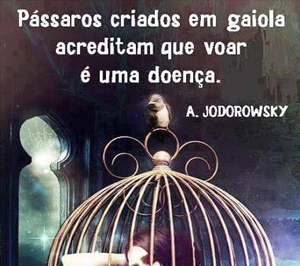 Pássaros criados em gaiola...
