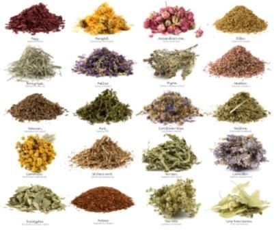 Herbal Tea list for different ailments