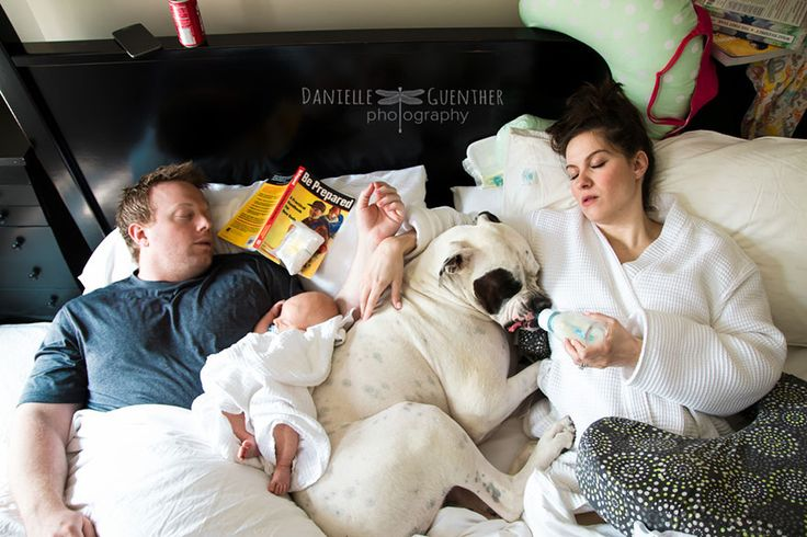 Photographer Reveals The True Chaos Of Being A Parent   Bored Panda