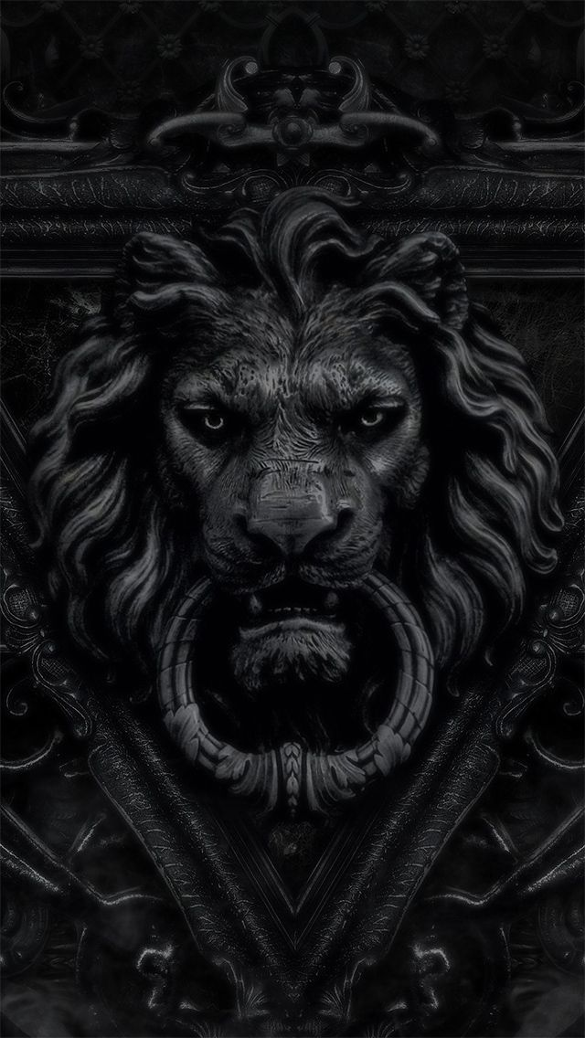 ☾ Midnight Dreams ☽ dreamy & dramatic black and white photography - lion door knocker