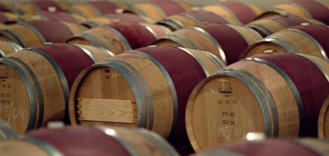 La Universidad Politécnica de Madrid patenta un procedimiento para mejorar la calidad de los vinos http://www.vinetur.com/2013073113021/la-universidad-politecnica-de-madrid-patenta-un-procedimiento-para-mejorar-la-calidad-de-los-vinos.html