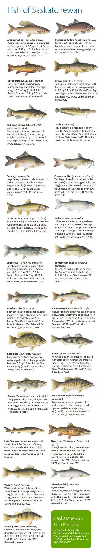 Saskatchewan Fish