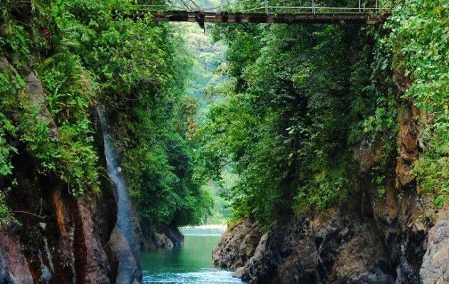 Na przełaj!  Monteverde zachwyca nie tylko egzotycznymi ptakami i roślinnością, ale także atrakcjami dla lubiących aktywny wypoczynek. Znajdują się tu liczne wąwozy i rwące rzeki, gdzie można uprawiać wspinaczkę, trekking i kajakarstwo.