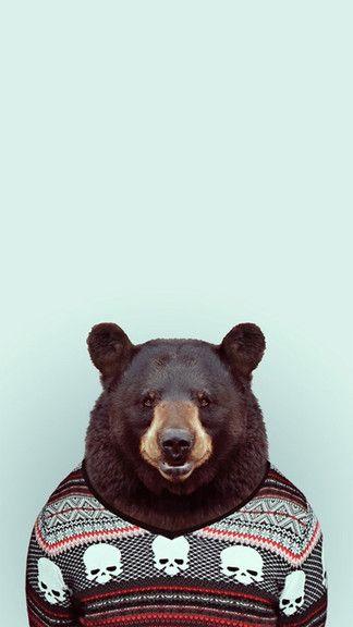 Bear Portrait iPhone 6 / 6 Plus wallpaper Pet portraits