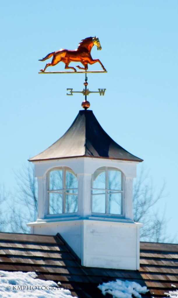 79 best roof images on pinterest towers future house for Roof cupola plans