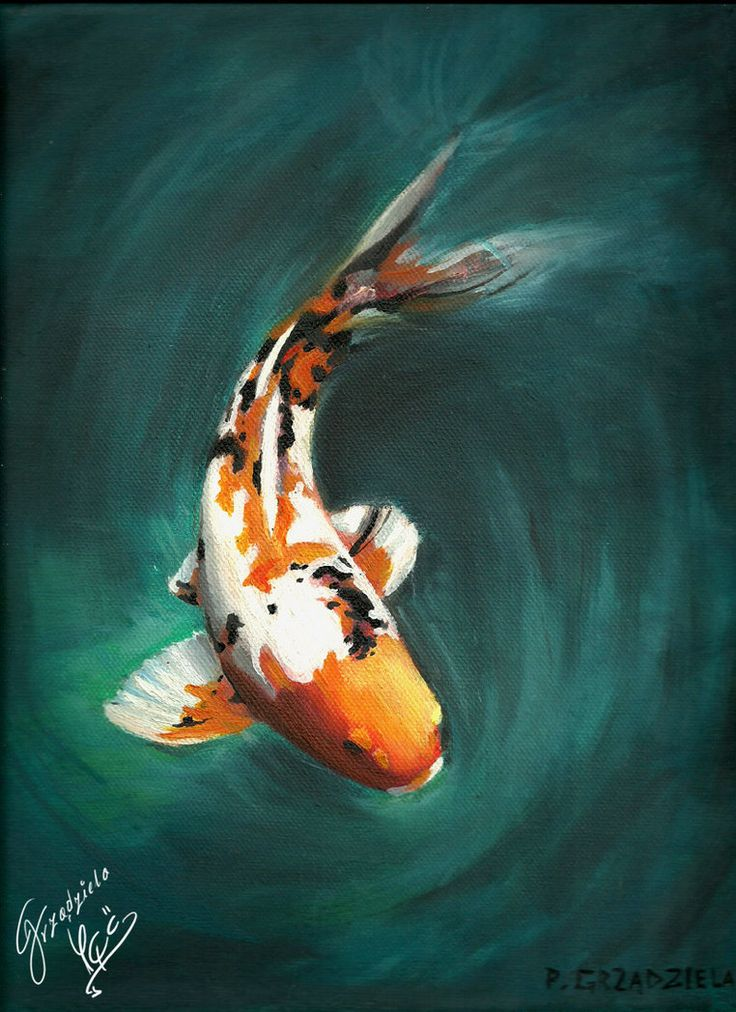 Koi fish oil painting images for Pics of koi fish