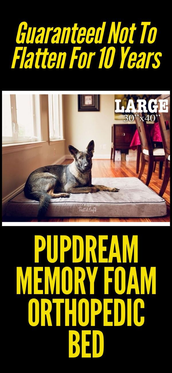 Orthopedic dog beds for large dogs, also comes in extra