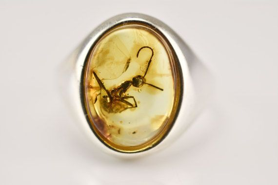 Gift For Women Ring Amber Fossil ANT Insect by AmberSmell on Etsy