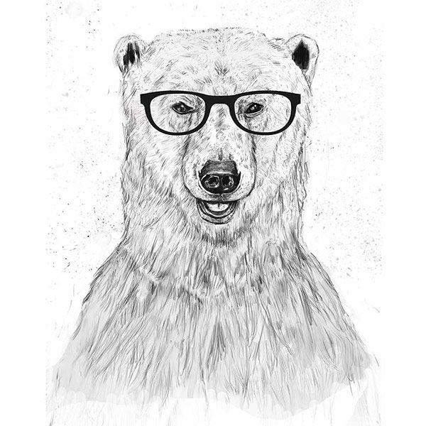 Animales hipster. Balázs Solti