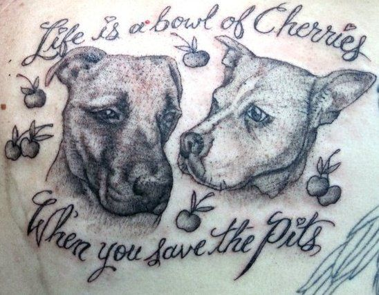 best 25 pit bull tattoo ideas on pinterest dog tattoos pitbull drawing and pet tattoos. Black Bedroom Furniture Sets. Home Design Ideas