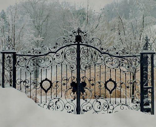Love wrought iron gates: Doors, Winter Snow, Fence, Art Nouveau, Wrought Irons Gates, Beautiful, Winter Wonderland, Gardens Gates