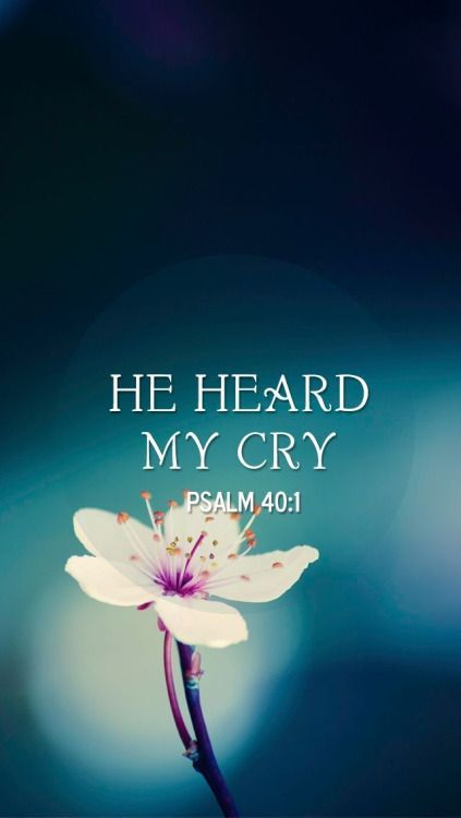 Psalm 40:1KJV ~ I waited patiently for the Lord; and he inclined unto me, and heard my cry.