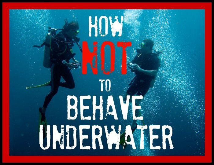 Dive etiquette is fundamental to every diver's success and enjoyment, but behavior like what is displayed in this video is atrocious and unacceptable. http://aquaviews.net/scuba-guides/dive-etiquette-behave-underwater/