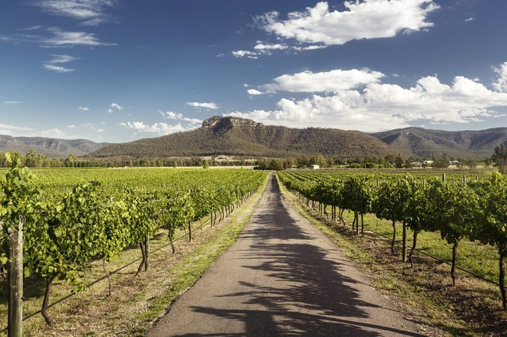 The Hunter Valley, New South Wales. | 29 Places In Australia You Need To Visit Before You Die