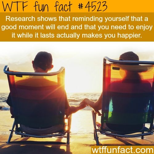 Enjoy it while it lasts - WTF fun facts