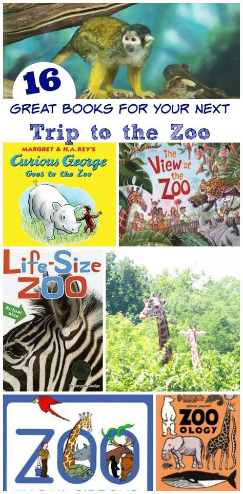 Wonderful books to read before or after a zoo visit!