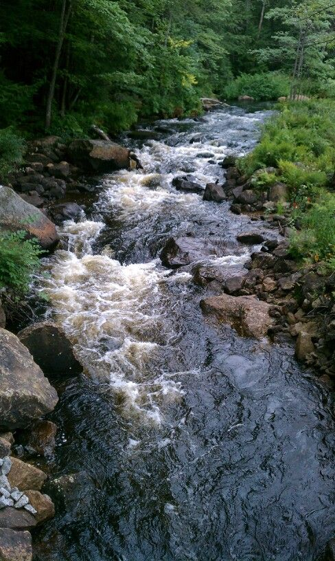 A creek in my back yard would be perfect <3