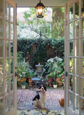 I love the French doors leading to this charming, lush patio. And the pup too.