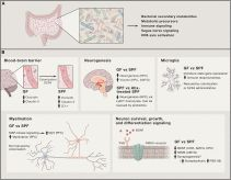 Mejores 284 imgenes de microbiota leverage en pinterest las the central nervous system and the gut microbiome gil sharon timothy r sampson malvernweather Image collections