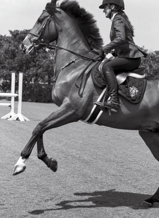 Ce n'est pas un cheval et vous n'êtes pas dans un manège c'est un partenaire de danse