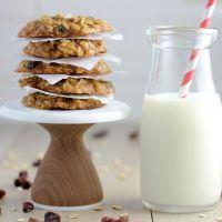 vegan gluten free oatmeal raisin cookies