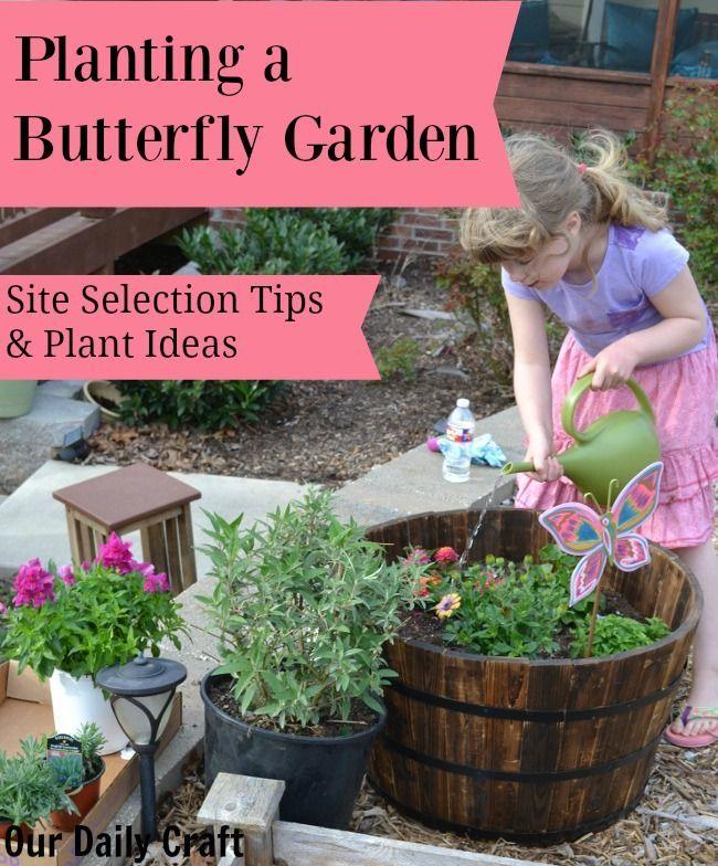 17 best ideas about butterfly garden plants on pinterest - Butterfly and hummingbird garden designs ...