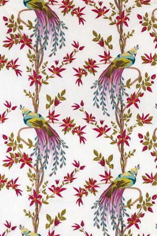 Nina Campbell Paradiso fabric