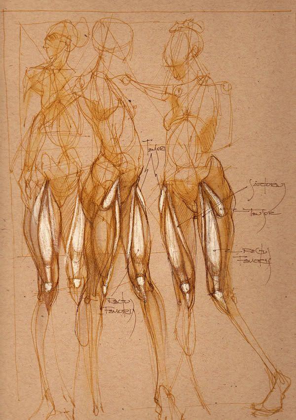 55 besten dessin structure corp Bilder auf Pinterest | Drawing ...