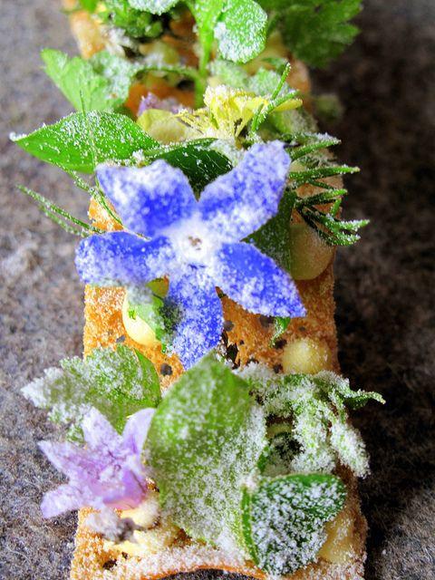 Amuse bouche, by Chef René Redzepi at Noma Restaurant, Copenhagen.