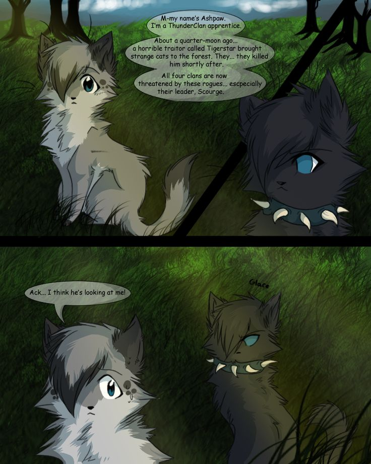 warrior cats | Warrior Cats Couples Revengeshipping