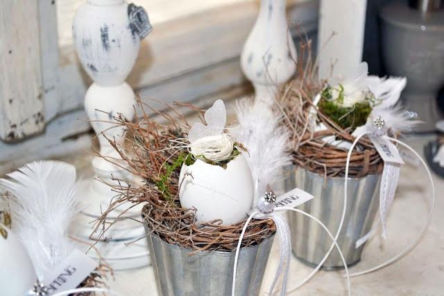 Kvety vo vajíčkových škrupinkách