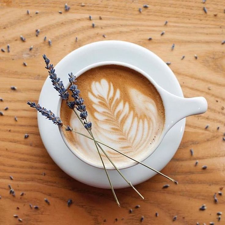 Hey Lavender Coffee Latte Art Aesthetic Coffee