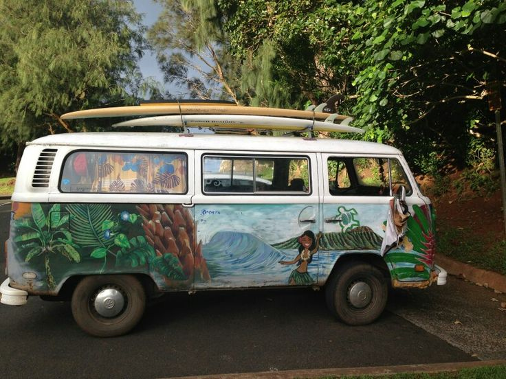 Volkswagen van chilling in Hawaii