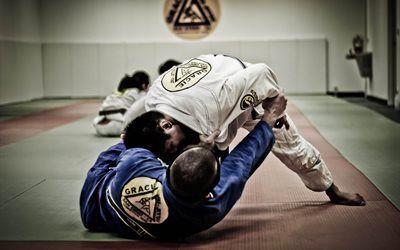 壁紙をダウンロードする 武術, サンディエゴ, 柔術, スポーツ, 畳