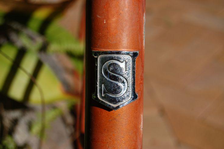 Speedwell logo