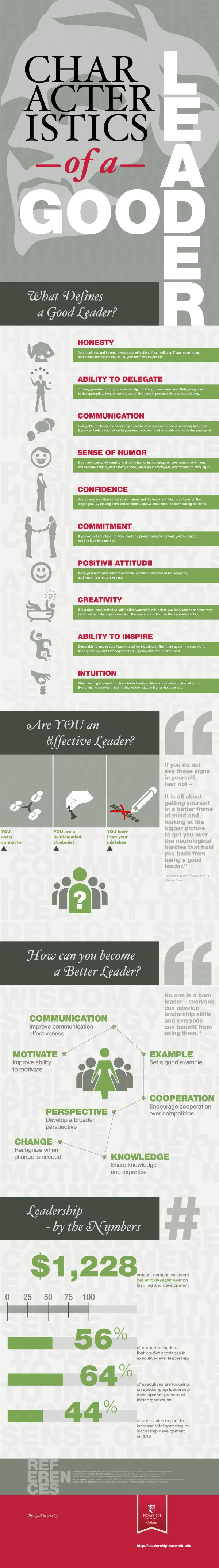 best images about employee management job characteristics of a good leader and how to cultivate them infographic