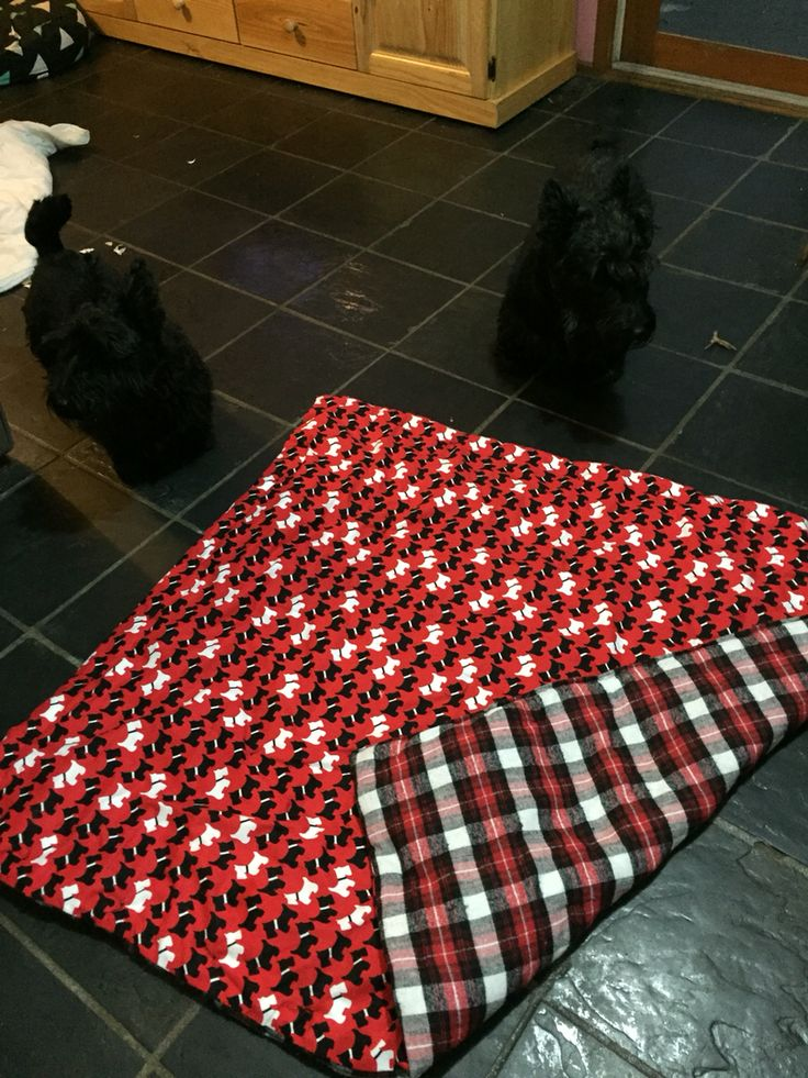Quilt for Dougal
