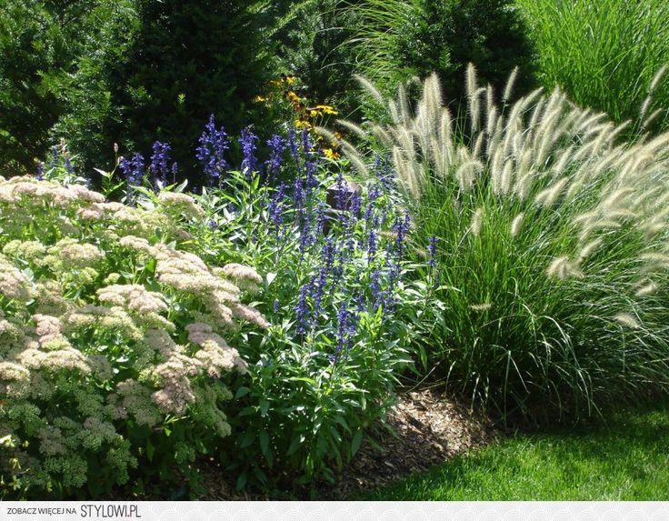 41 best Landscape Idea images on Pinterest Gardens Landscaping