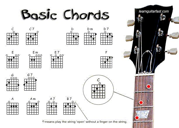 Learning the Fretboard | Guitar Lesson World