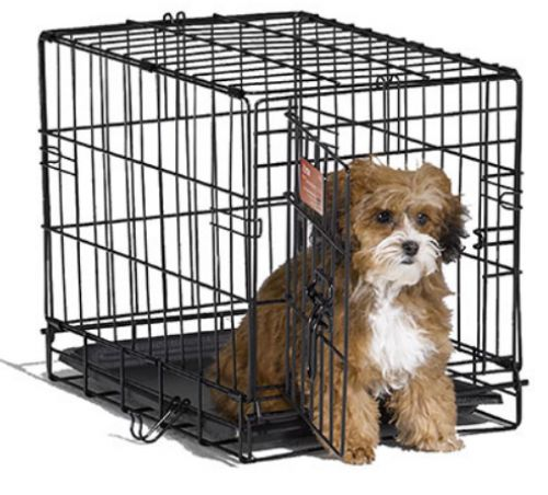 Midwest iCrate Single Door Folding Dog Crate | Dog | Beds, Crates & Gear | PetFlow