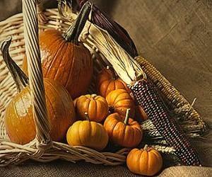 Colors | Trendy room decorations: Fall Outdoor Decor, Decor Ideas, Decorating Ideas, Google Search, Fall Halloween, Fall Decorating, Baskets, Decoratingideasforhom Com, Rooms Decor