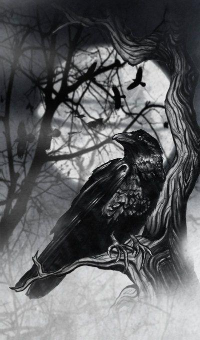 Ravens by dcbats2000.deviantart.com on @DeviantArt