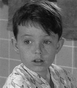 Jerry Mathers as Beaver Cleaver on the tv show Leave It to Beaver