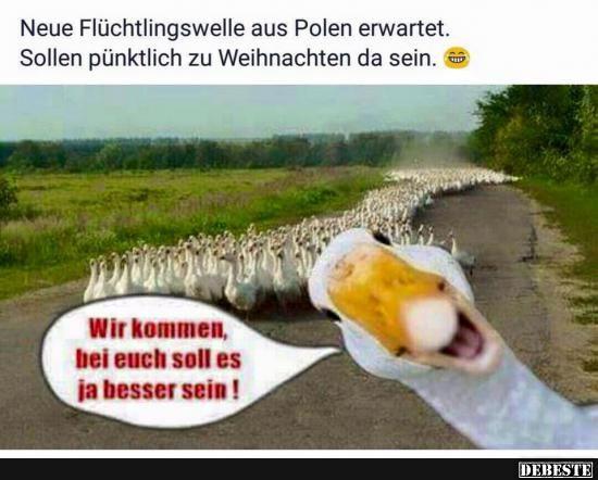 Neue Flüchtlingswelle aus Polen erwartet..   Lustige Bilder, Sprüche, Witze, echt lustig