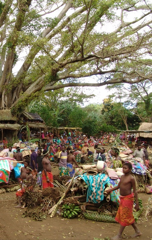 tanna market - vanuatu