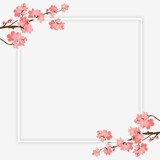 Cherry Branch Frame Png And Psd Rectangle Cherry Palm Png Transparent Clipart Image And Psd File For Free Download Cherry Blossom Background Tree Clipart Family Tree Clipart