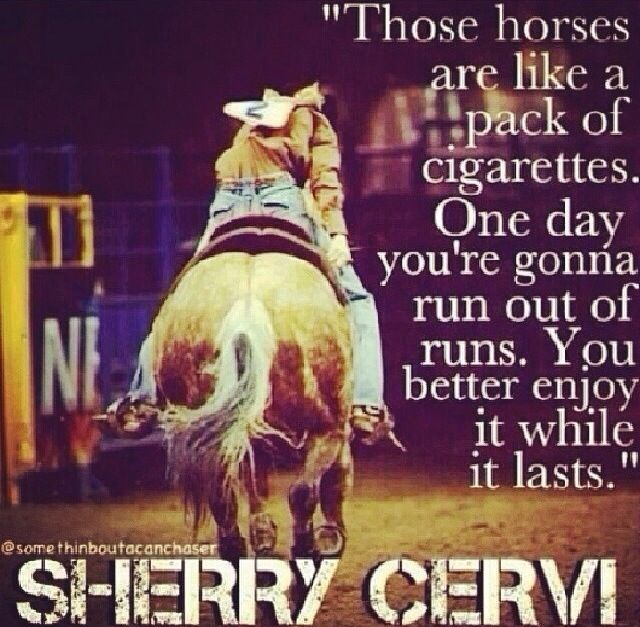 Barrel Racing Quotes Stunning 262 Best Barrel Racing Quotes Images On Pinterest  Equestrian .