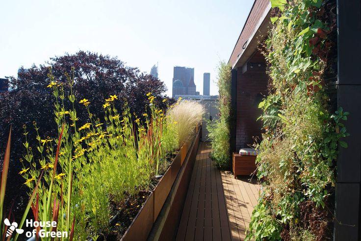 Terras Den Haag : Moderner Balkon, Veranda & Terrasse von House of Green